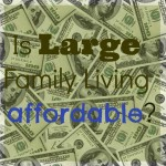 Is Large Family Living Affordable?