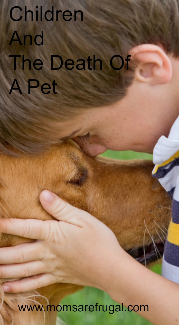 Children And The Death Of a Pet
